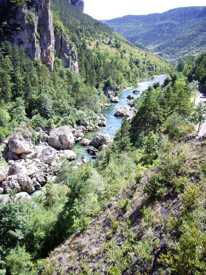 Gorges du Tarn - Lozère Imgp5011