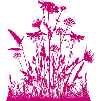 Brushs fleurs 09041710