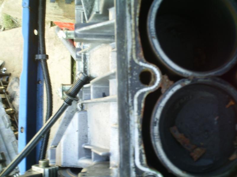 205 gti bleu miami import suisse Img_0169
