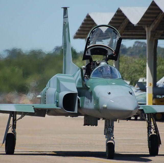 Les F-5E/F/N Tiger II / Aggressor - Page 3 F-5em_10