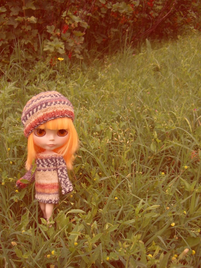 Beckie Jane, PD Mango Cimg5511