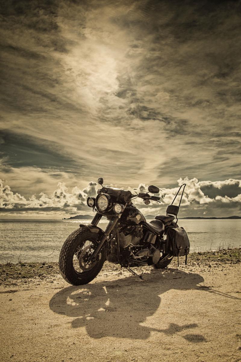 Black Slim S de Gozp - Page 9 Harley13