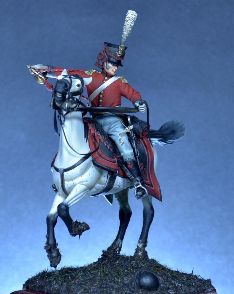 Belgian horse artillery _dsc0110