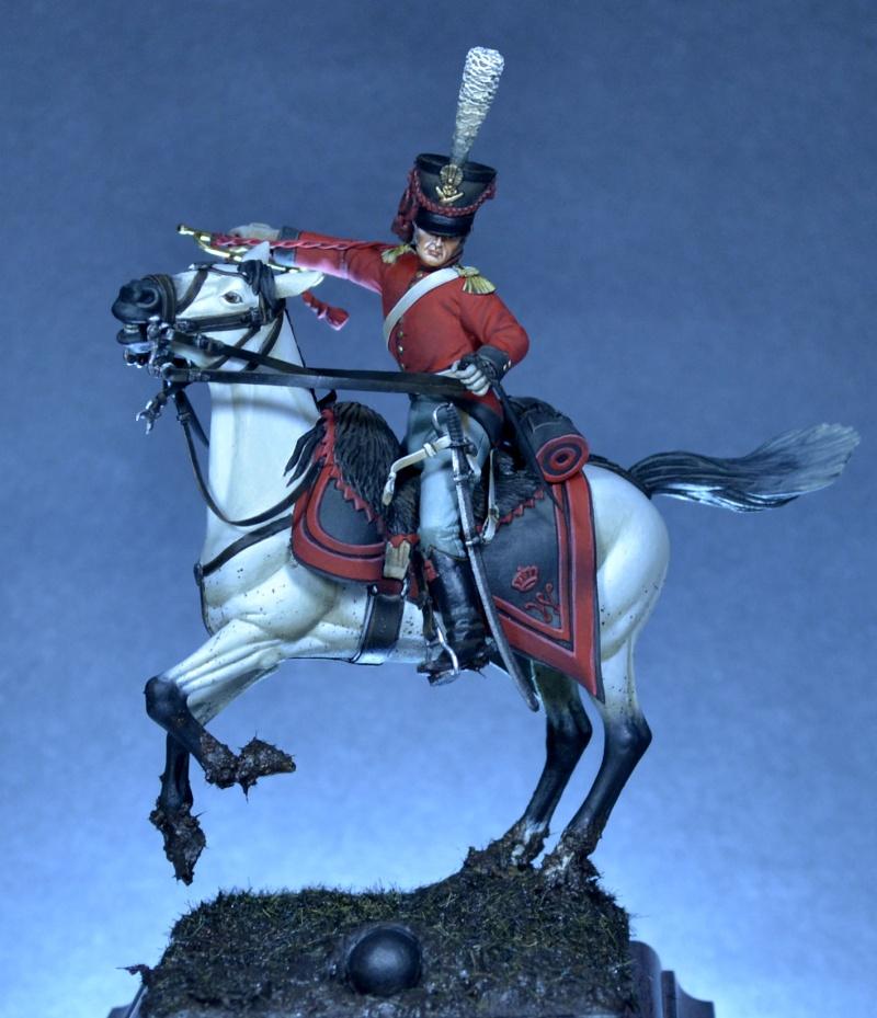 Belgian horse artillery _dsc0111