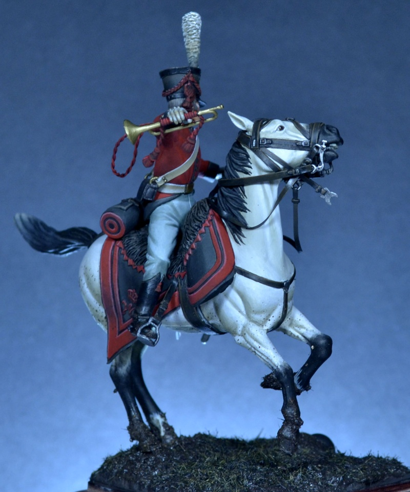 Belgian horse artillery _dsc0112