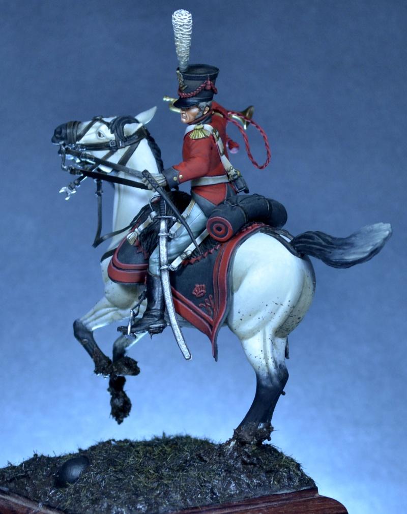 Belgian horse artillery _dsc0114