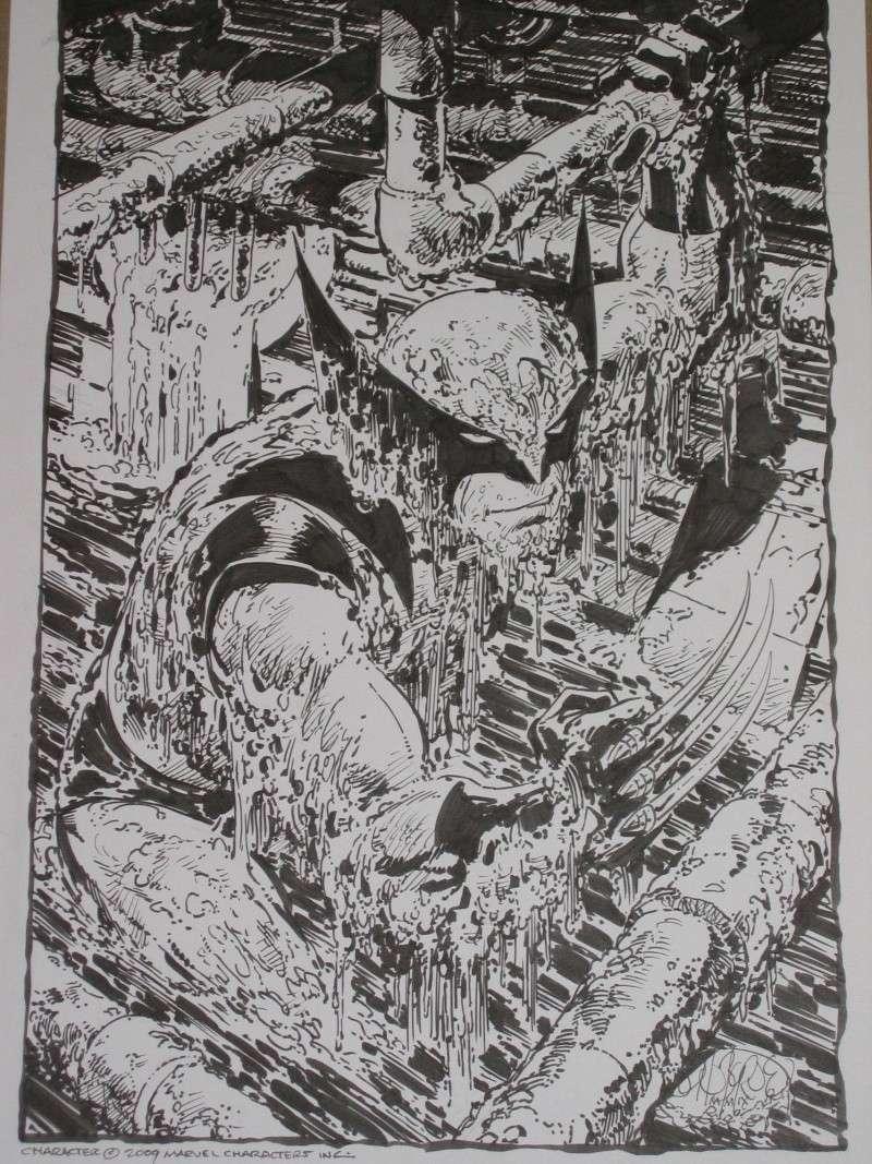 La collec de Manu (tosi6319) - Page 2 Wolwyb12