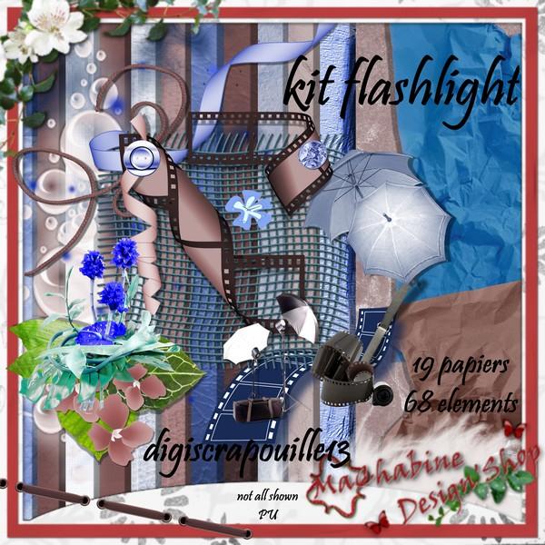 flashlight Digisc11