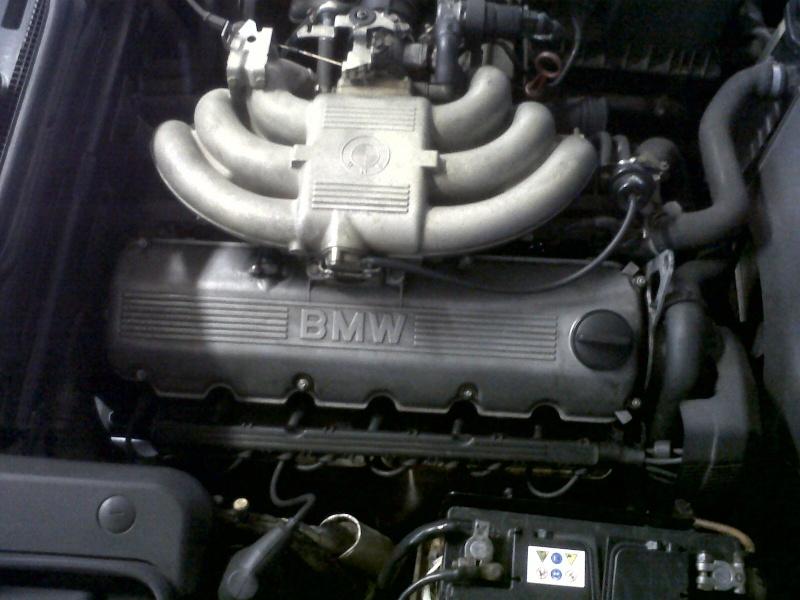 m20b25 de Tof26 Bmw_im22