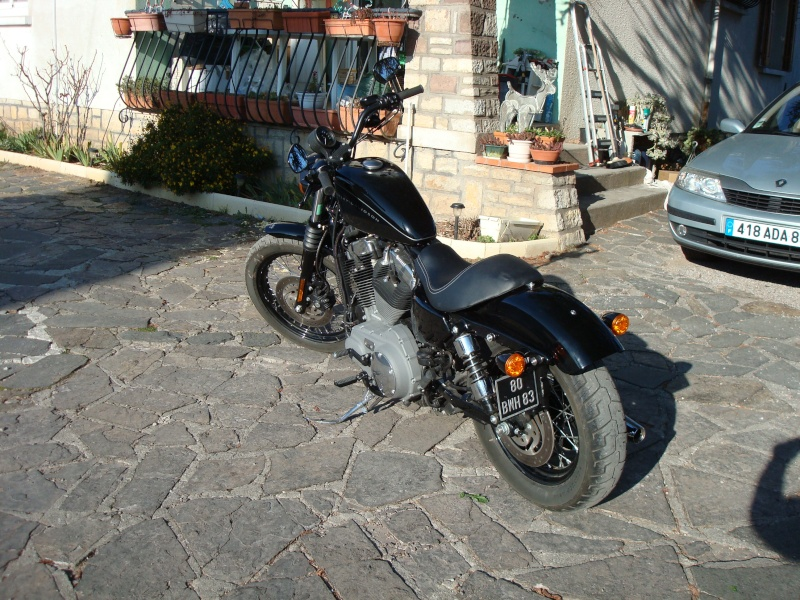 combien sommes nous en 1200 Sportster sur Passion-Harley - Page 3 Dsc03010