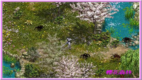 櫻花森林 地區 Aesaz10