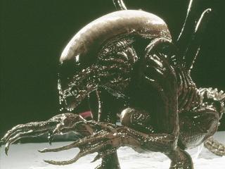 Aliens vs The Thing 53652710