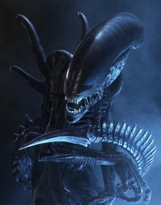 Imágenes de Alien Drone10