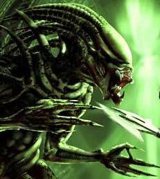 Pred-Alien Predal10