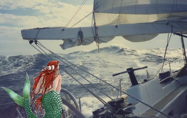 une sirène dans vos océans... Melusi10