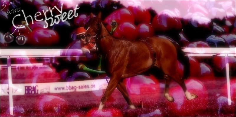 BOX DE CHERRY SWEET Cherry10