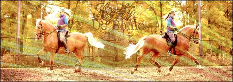 BOX DE LIGHT DE BOMO Light_10