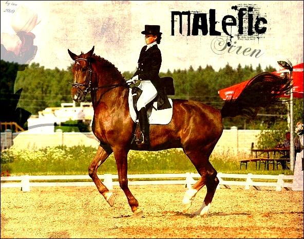 BOX DE MALEFIC SIREN Malefi10