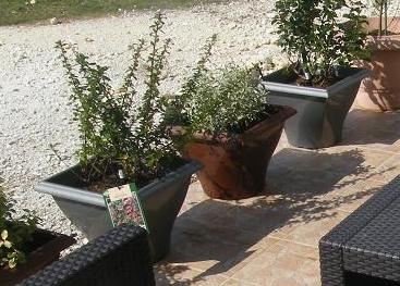 cache -pots Caches10