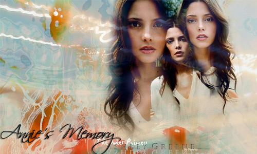 Annie's Memory L4fc0u10