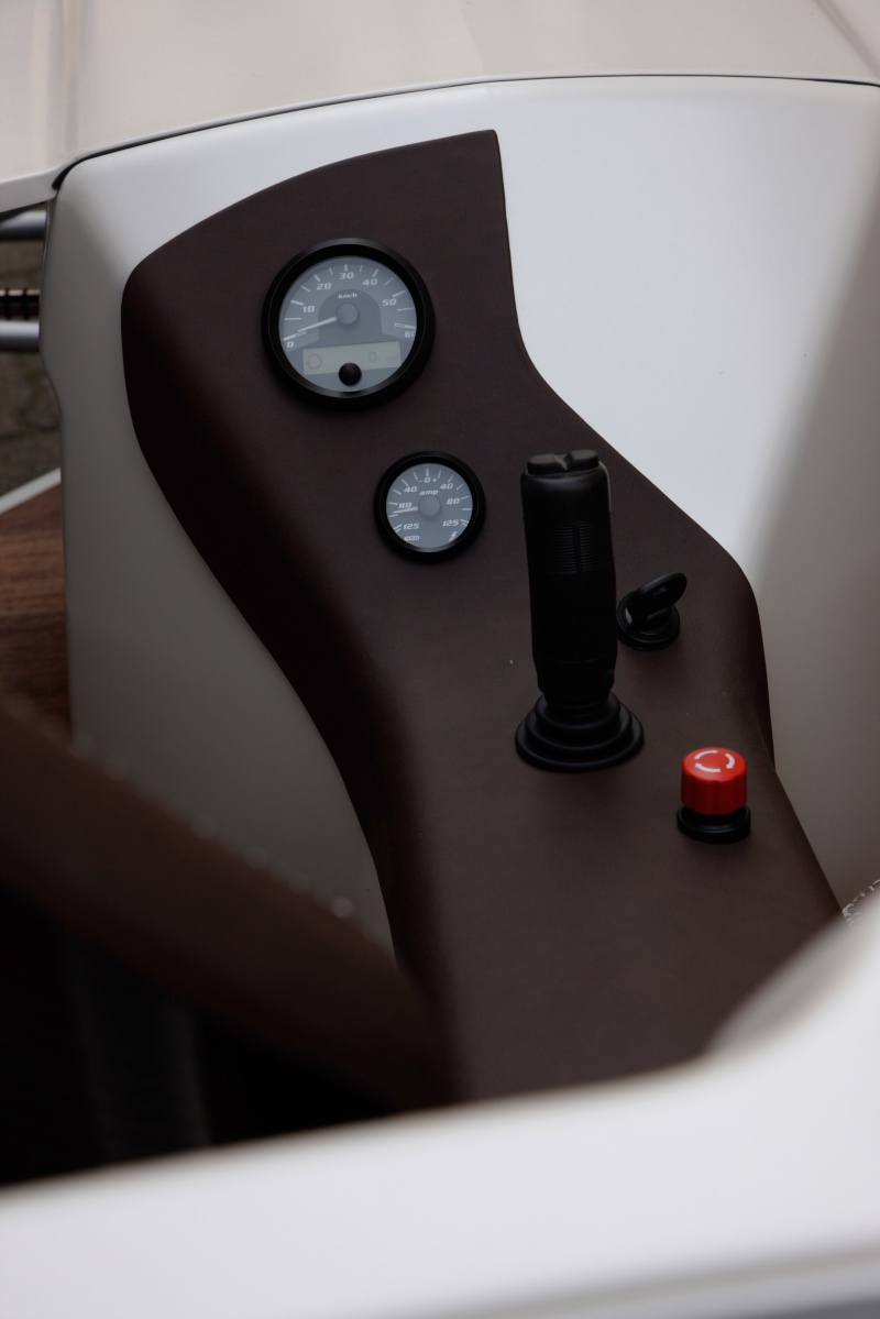 Bertha Ringer Benz F-cell14