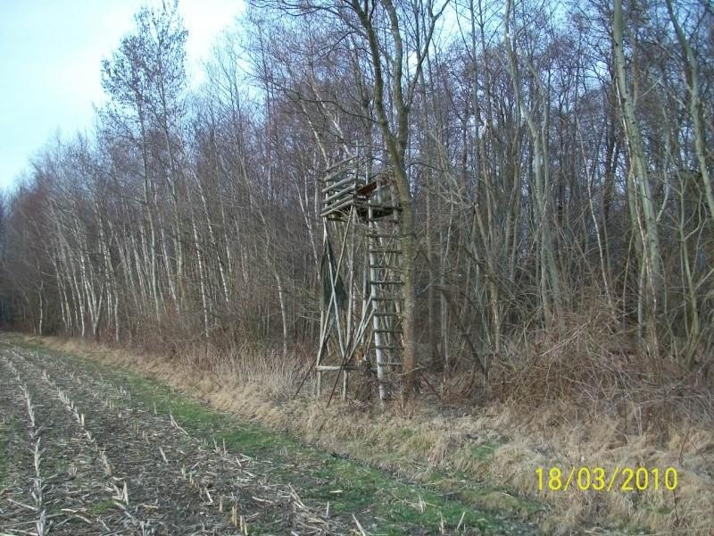 construction de miradors et postes d'affût 100_0610