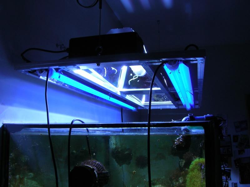 éclairage HQi 2x250W Dscn1610