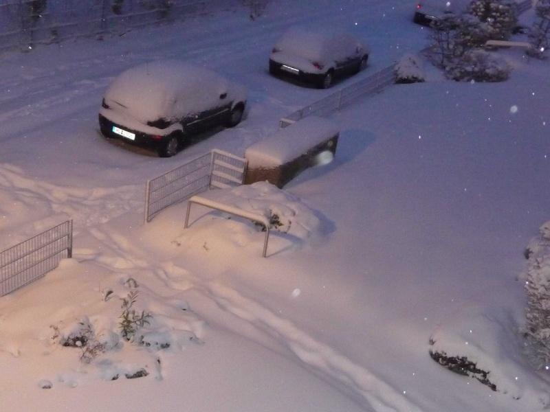 Winter 2009/210 P1000513