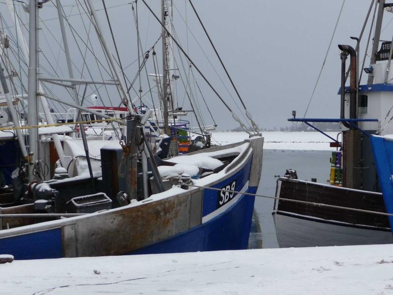 Winter 2009/210 P1000516