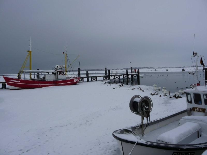 Winter 2009/210 P1000524