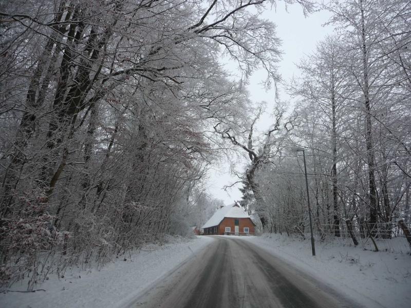 Schnee, Schnee, Schnee ! P1010310