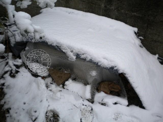 SUD de la France : exemple de cabane, abris divers et fosse d'hibernation Abris_11