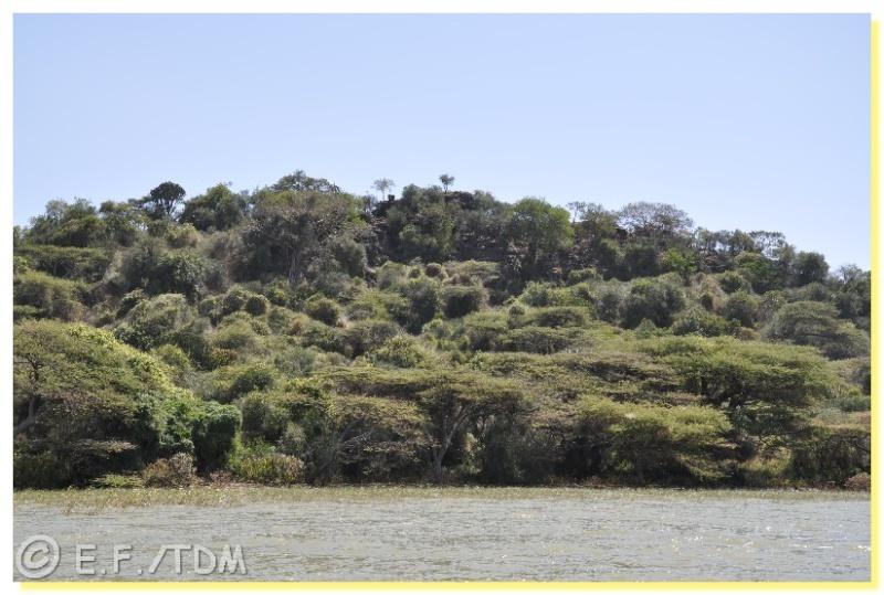 Éthiopie, quelques photos Ethio010