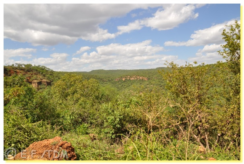 Éthiopie, quelques photos Ethio014