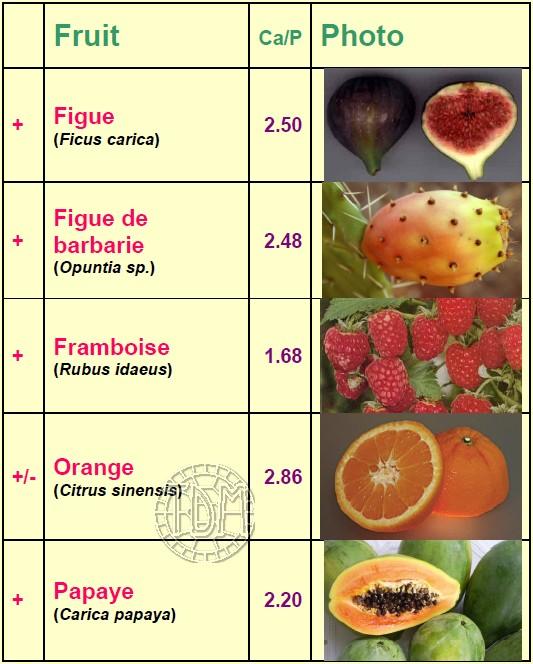 Alimentation des tortues terrestres méditerranéennes Fruits10
