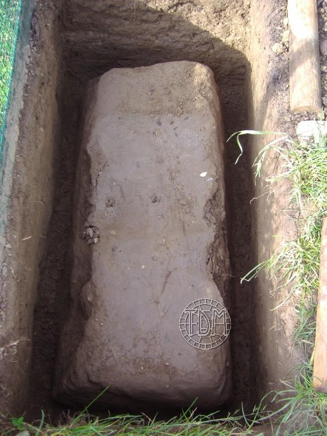 NORD de la France, Suisse: exemple d'une fosse d'hibernation coffrée avec serre pour espèces sensibles à l'humidité Hc210