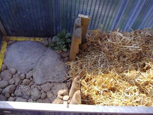 NORD de la France, Suisse: exemple d'une fosse d'hibernation coffrée avec serre pour espèces sensibles à l'humidité Hc610