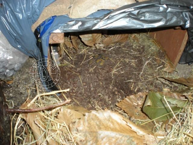 SUD de la France : exemple de cabane, abris divers et fosse d'hibernation Nat510