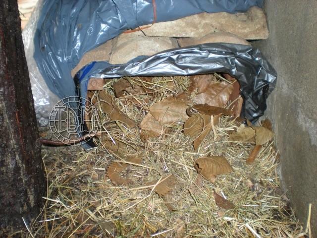 SUD de la France : exemple de cabane, abris divers et fosse d'hibernation Nat610