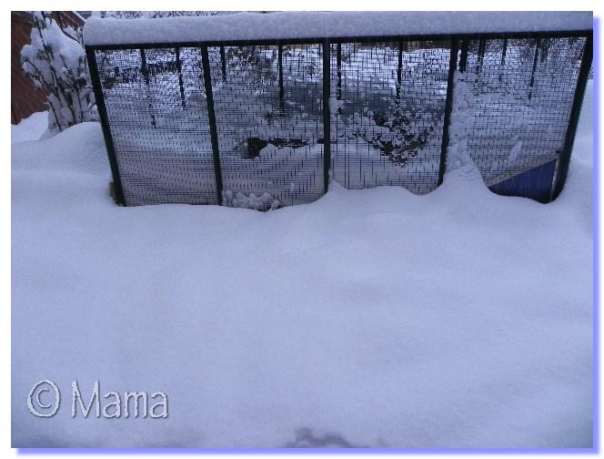 ATTENTION: Vague de froid actuelle - Page 3 Neige_10