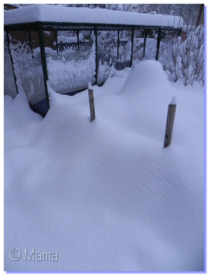 ATTENTION: Vague de froid actuelle - Page 3 Neige_13