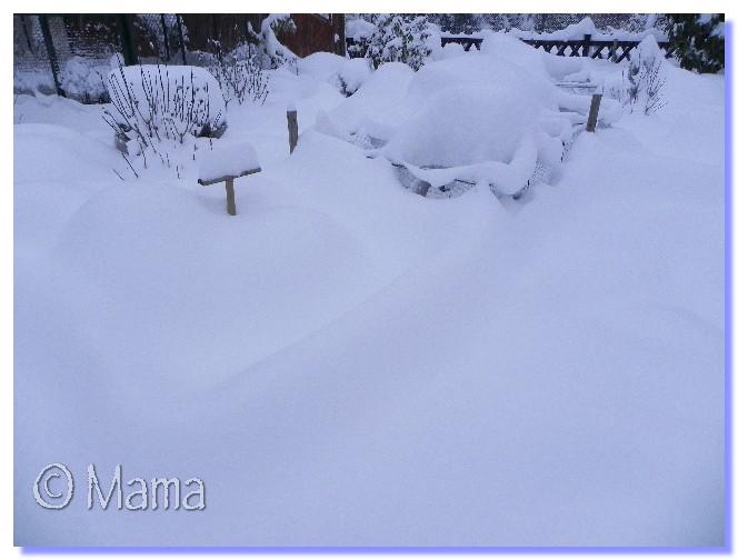 ATTENTION: Vague de froid actuelle - Page 3 Neige_15