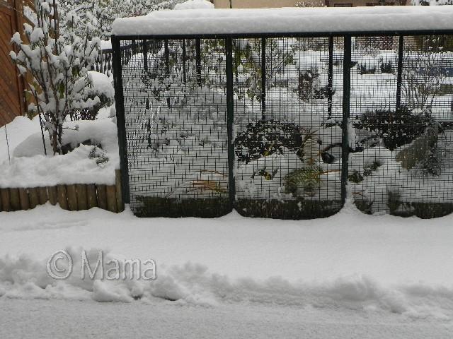 ATTENTION: Vague de froid actuelle Picto_10