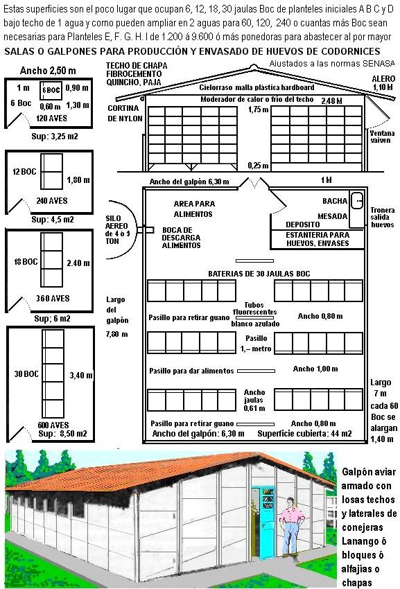 UD. INSTALA SU EQUIPO DE JAULAS BOC Y AVES, Ocupan poco lugar techado como en una pieza, garage, terraza, galería, taller, gallinero, tal como son o adaptan con pocos arreglos   Codorn12