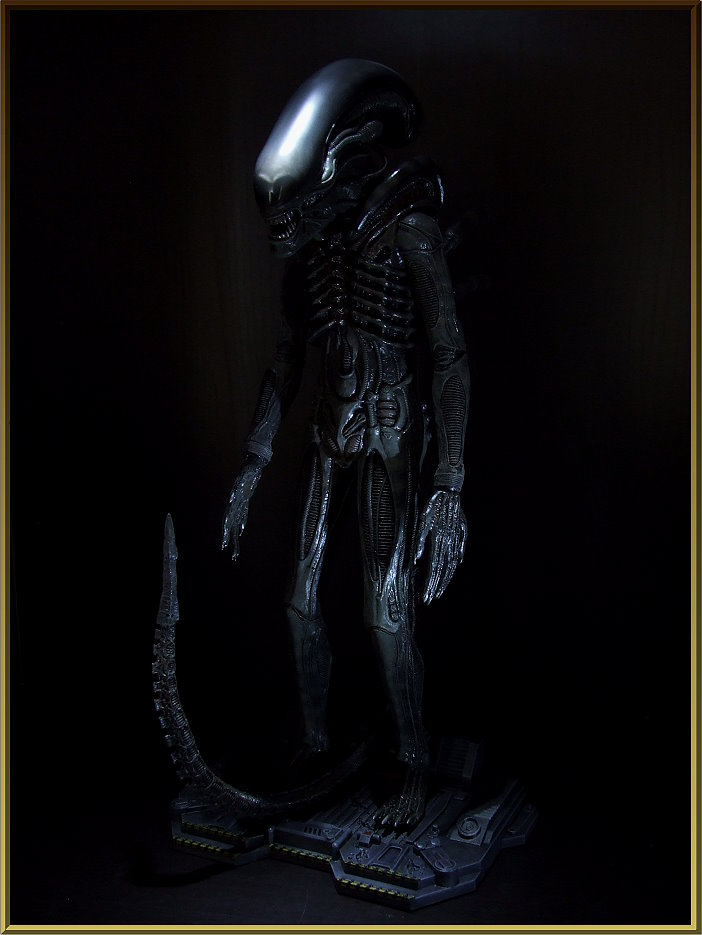 Collection n°80 - Ludo Alien_10