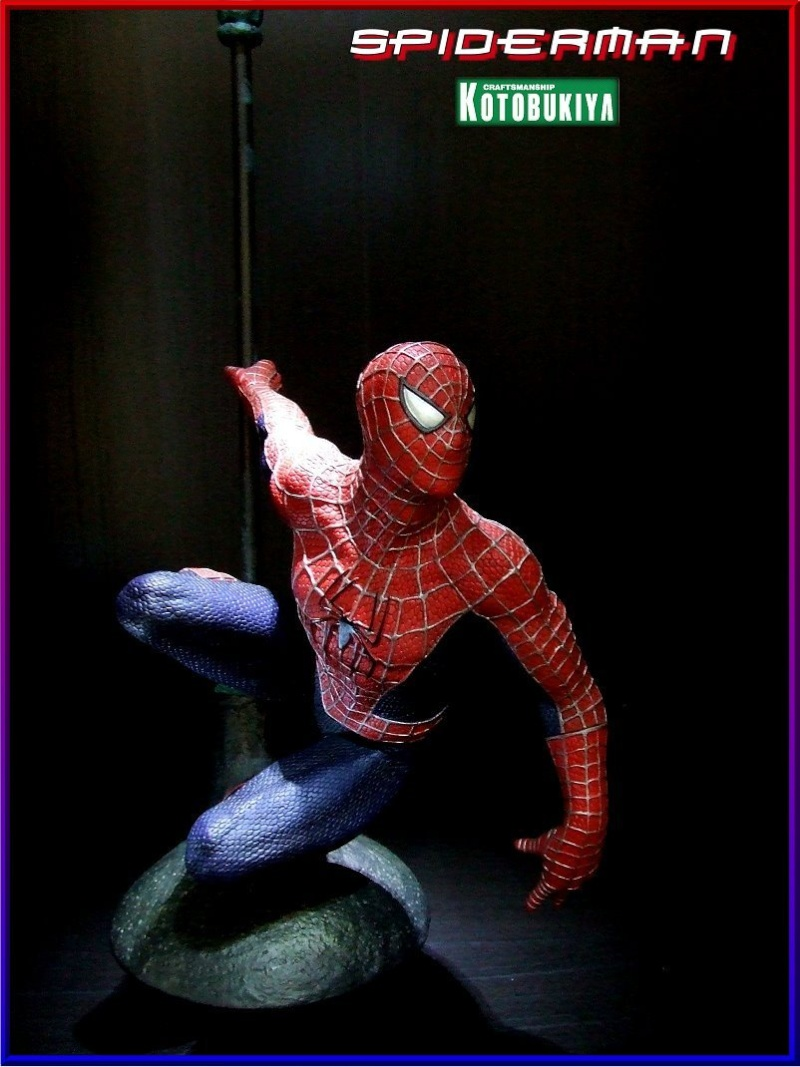 Collection n°80 - Ludo Spidey14