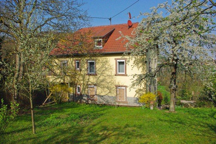 Maison,appartement à vendre ou à louer à Wangen 24933_11