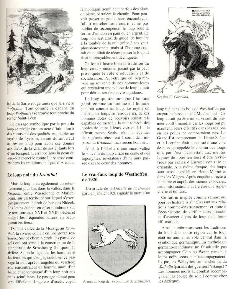 Le loup du Kronthal Image034