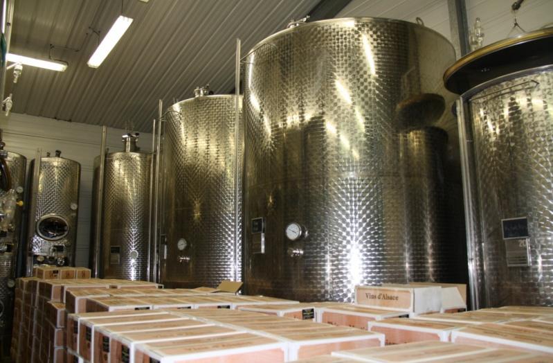 Vins et Crémant d'Alsace Thierry- Martin Img_0317