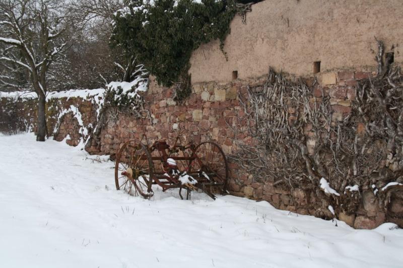 Vive la neige à Wangen ! - Page 2 Img_8427
